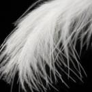 Edredones de plumón