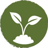 Almohada con núcleo biodegradable de látex 100% natural. No deja residuos perjudiciales para el Medio Ambiente