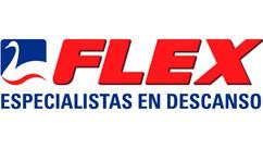 Flex en Ciberdescans